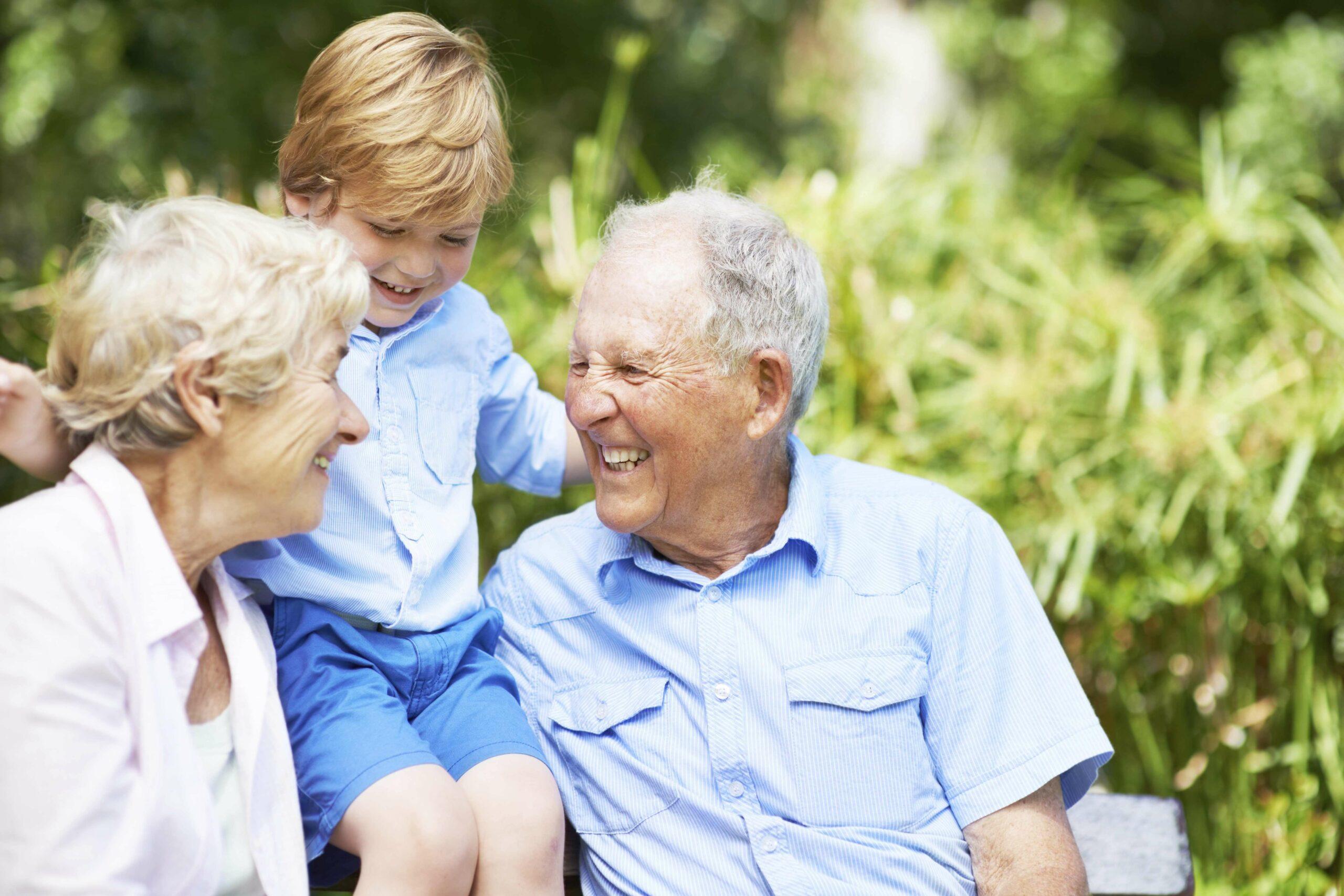 dementia education program